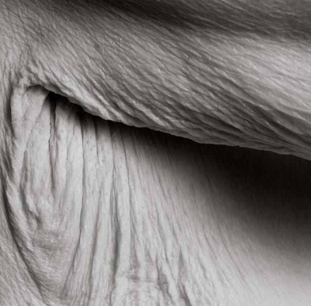 Fotos do corpo após os 100 anos